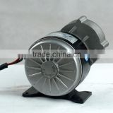 250w 24v 36v dc brush motor with gear , PMDC ,electric scooter brush dc motor 24v 250w