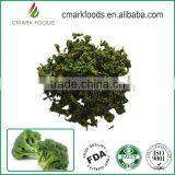 Wholesales dried fresh white bulk broccoli seed price