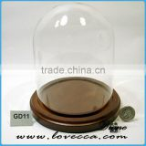 Mouth Blown Modern decoration Glass Globe customized flower clear glass display dome
