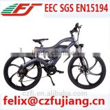 new design electric bicycle e bike MTB CE SGS EN15194(FJ-TDE05)                                                                                                         Supplier's Choice