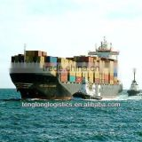 Competitive FCL sea freight service and CIQ agent to Damietta of Egypt from China Shenzhen Guangzhou Shanghai