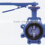 DN50-DN600 PN16/PV25/CLASS 125/CLASS250 Cast Iron Double Half Stem Wafer Butterfly Valve