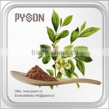 Multifunctional 100% natural green tea extract supplier for wholesales