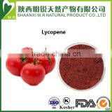 New Batch Hot Sale!!!!!! Tomato Extract Powder