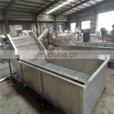Popular Profession Widely Used Air Bubble Cleaning Machine, Fruit and Vegetable Washing Machine (Bubble Washer)