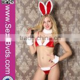 Cosplay Cute Girl Sexy Christmas Bunny Costume