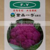 High Resistance hybrid purple Cauliflower seeds for growing and Sale-Purple pine F1
