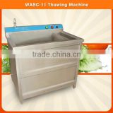 Stainless Steel Commercial Small Type Ozone Vegetable Fruit Meat Cleaner Washer Washing Machine