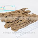 Angelica root (Angelica Sinensis) extract powder 1% Ligustilide