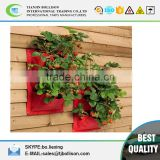 Flower/ Herb/Strawberry PE Vertical Wall Planting Bag,Strawberry Wall Flower Growing Bag,Reusable Wall Hanging Planter Bag