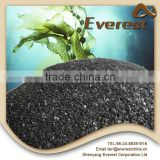 Natural Kelp Seaweed Extract 18% Flake, 100% Water Solubility