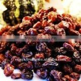 dried black fresh raisins