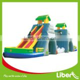 Hot Sale Giant Inflatable Water Slide for Adult LE.CQ.003