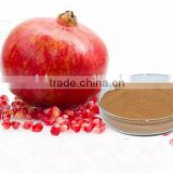 100% Natural Pericarpium Granati 50 %Polyphenols 2% Ellagic Acid Pomegranate Peel Extract