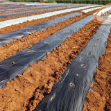 Accept custom order agriculture black plastic mulch film for greenhouse
