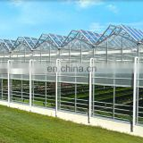 tropical solar hydroponic greenhouse