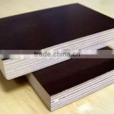 CE Qualified plywood brown film faced plywood for concrete formwork use(PLYWOOD MANUFACTURER)