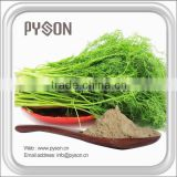2016 free sample Fennel Seed Extract