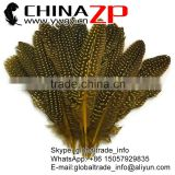 Best quality plumage wholesale Polka Dot Dyed yellow Guinea Fowl Wing quills Feathers for sale