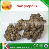 Raw Propolis Best Stomach Medicine Organic Super Bee Propolis