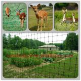 Plant and crops protection - DEER FENCE