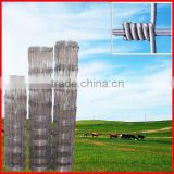 Hot Dipped Galvanized Hog Wire Fencing