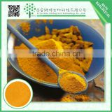China wholesale 95% curcuma extract curcumin