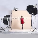 1000W photo studio flash lighting kit for film photography equipment                                                                         Quality Choice