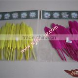 Wholesale Feather Products Craft Natural Goose Feather For Feather Pen And Christmas Decoration