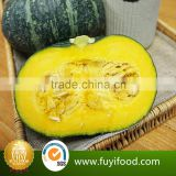 2016 Manufactory Fresh pumpkin vegetable