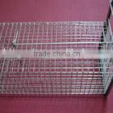 Anping rabbit farming cages/weled metal cage(manufacturer)