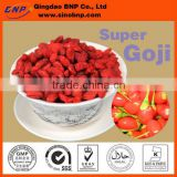 2016 New arrival GMP 100% Natural & High Quality Goji berry juice powder From China Sino BNP