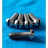 titanium dental implant screw