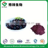 Wholesale Acai Berry Powder Frozen Acai Pulp Powder in Bulk