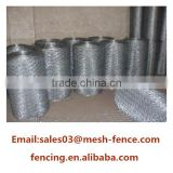 Hexagonal chicken wire mesh fence / lowes chicken wire mesh roll / chicken coop hexagonal wire mesh                                                                                                         Supplier's Choice