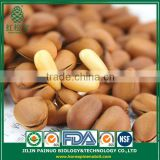High Quality Hot Sale Organic Siberian Open Pine Nuts in Shell