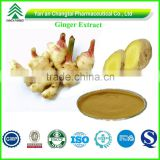 GMP Factory Supply Top quality Organic ginger extract Powder gingerol