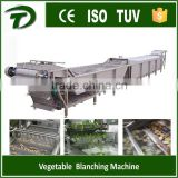 fruit and vegetable industrial washing machine                                                                         Quality Choice