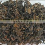 DRIED SARGASSUM LEAVES-SEAWEED_HIGH QUALITY - BEST PRICE