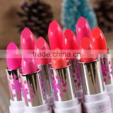 Wholesale MAYCHEER High Quality Cosmetics B Makeup 12 Colors Vampures kiss Lipstick Matte
