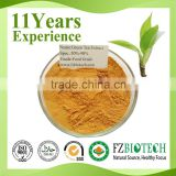 Free Sample Oil Soluble Liquid Matcha Bio Green Tea Extract, Green Tea Extract Powder polyphenols Bulk msds