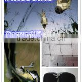 bird hunting net /nylon bird mist net with little holes 15x15mm 0.12mm*18 * 18mm, 2mx15m to SAUDI Quality, bird catcher bat Nets
