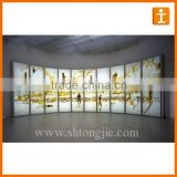 Hot Sale Customized Full Colour Printing PET Lightbox Film,High Resolution Lightbox Film