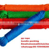 Tai An 3 inch diameter polypropylene(pp) rope factory price