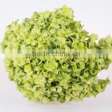 High quality valentine festive dubai fresh flower importers names of flowers used for decoration artificial hydrangea