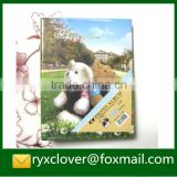 Teddy bear cover plastic sheets photo album