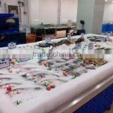 APEX custom make stainless steel refrigerated fish display table