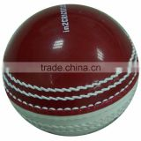 Trainer Incredible Shiny Cricket Ball