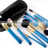 blue 10 piece animal hair angled wooden make-up brush set with pouch