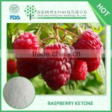 Plant extract Lose weight product Raspberry Extract 99% Raspberry Ketone
